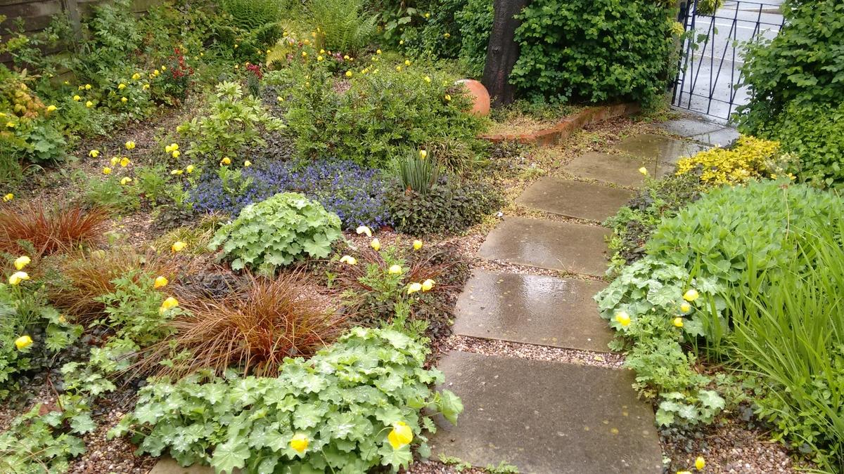 Gravel garden.