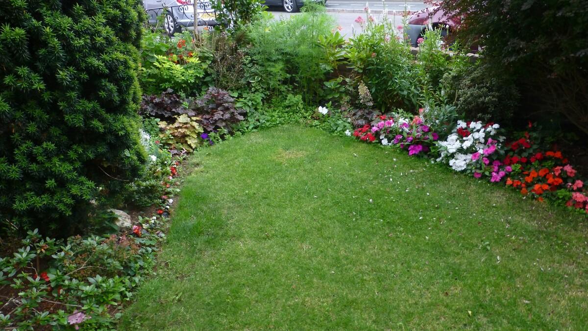 Front Garden Summer 2017